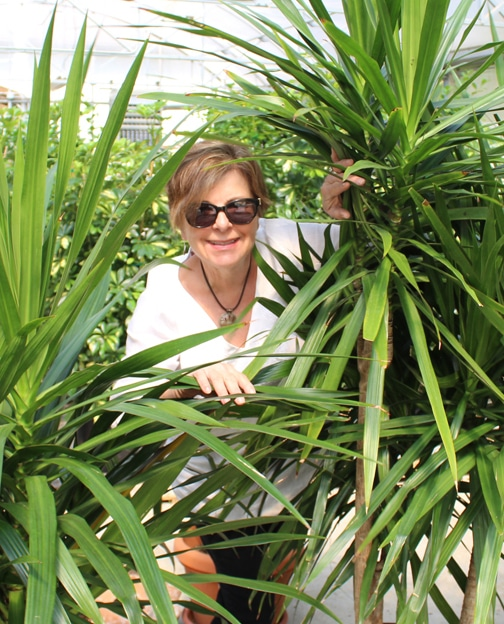 Sandra Bennett Shady Lady Kalamazoo