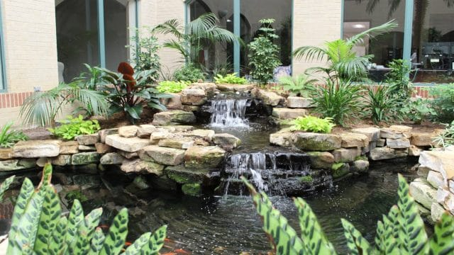 atrium plant design